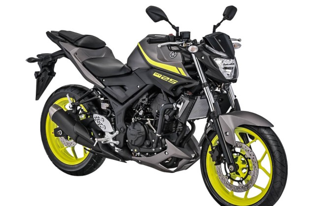 Yamaha-MT-25-Matte-Grey-2